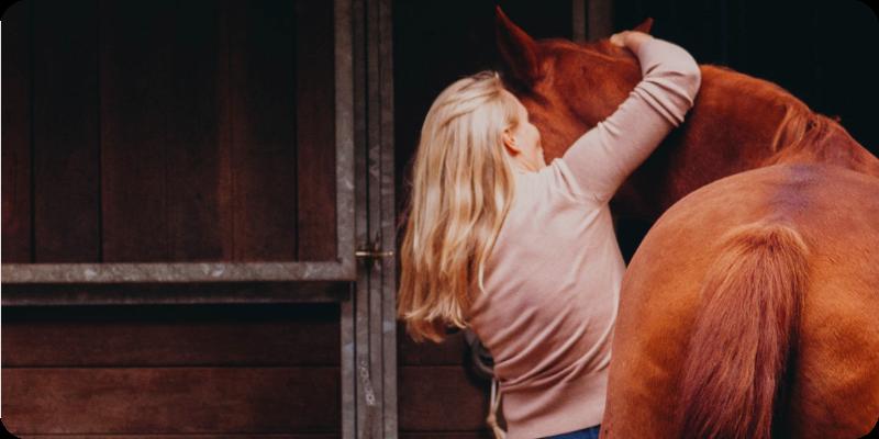 Equina Basics Paarden